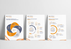 Mobius Consulting Infographic Posters