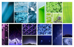 Phinity Suite Colour Palettes