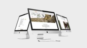 Kambaku Website Desktop