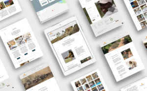 Kambaku Website iPad